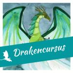 Cursus werken met Draken